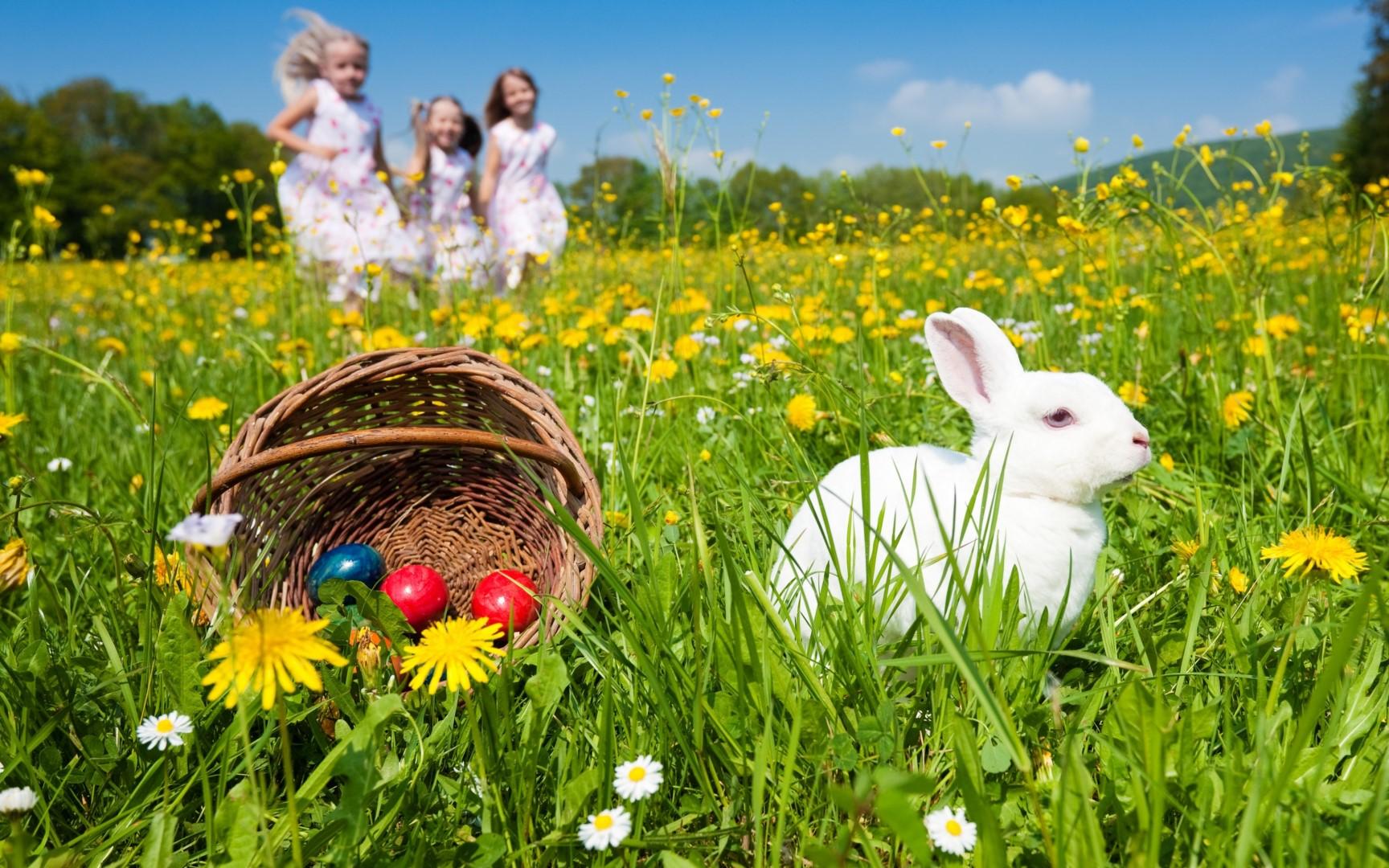 49_t_Easter-basket-spring-time_5120x3200.jpg